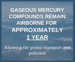 Gaseous Mercury