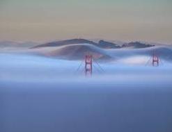 Marine fog inputs appear to increase methylmercury bioaccumulation in a coastal terrestrial food web