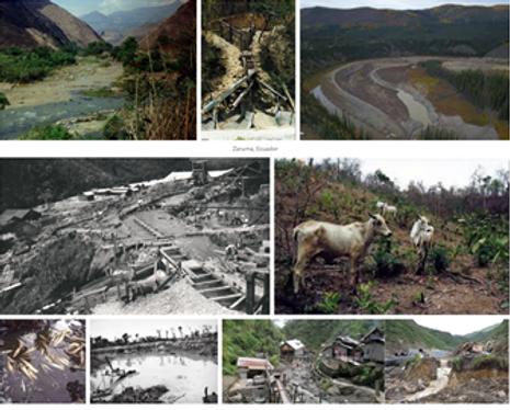 Biodiversity Damage.png
