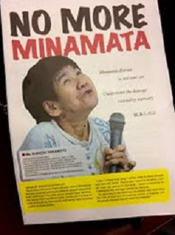 Minamata disease (Japanese) is a neurological syndrome caused by severe mercury poisoning
