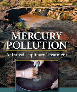Artisanal small-scale miners mercury ore processing for jewellery, and electronics gold.