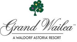 Partner-Grand Wilea