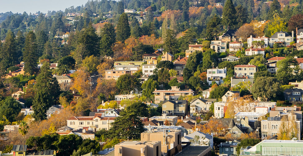 Berkeley Hillside