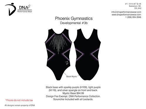 Vancouver Phoenix Gymnastics- Custom #3B