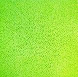 Lime Glitter Mesh