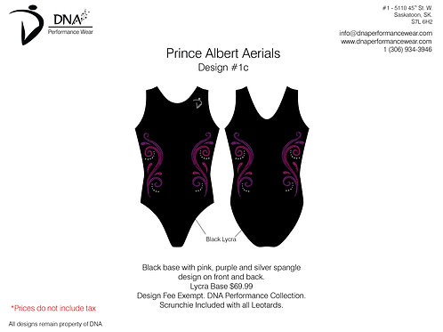 Prince Albert Gymnastics- #1C
