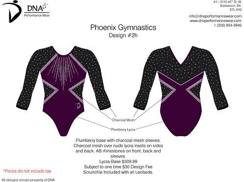Vancouver Phoenix Gymnastics- Custom #2H