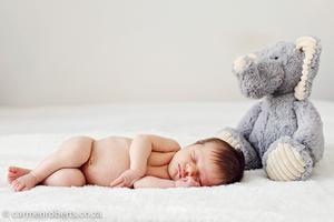 Carmen Roberts Photography, Reid Newborn and Preggie