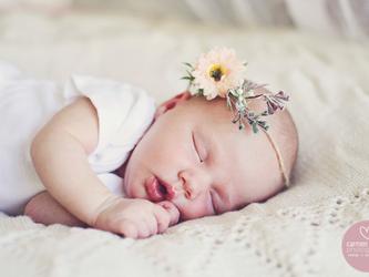 Scotty Newborn Shoot | Blythedale