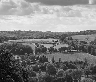 Woodchester vineyard view from Amberley