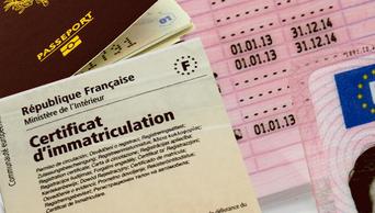 Certificat d'immatriculation, passeport