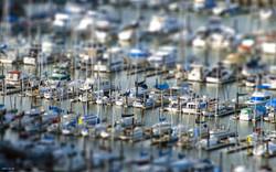 tiltshift_yachts_in_marina_5876