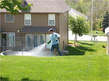 blanket-weed-spray-herbicide-broadleaf-w