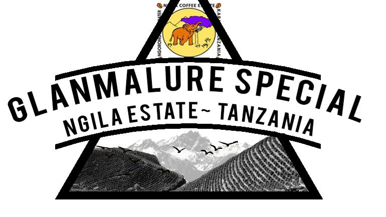 James Gourmet Coffee - tanzania: Ngila estate, Glanmalure Special