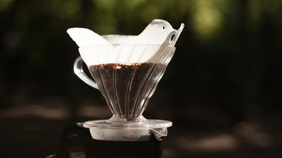 V60 Dripper 02 Bird Filter Papers