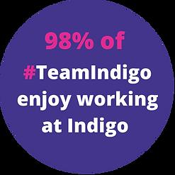 Indigo at Home-8.png