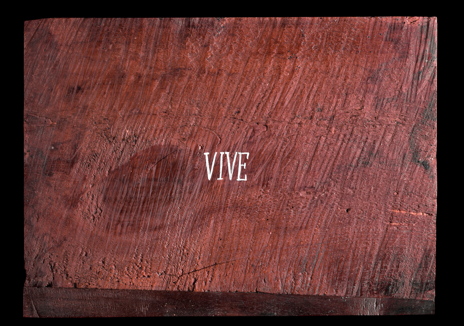 vive - 1977