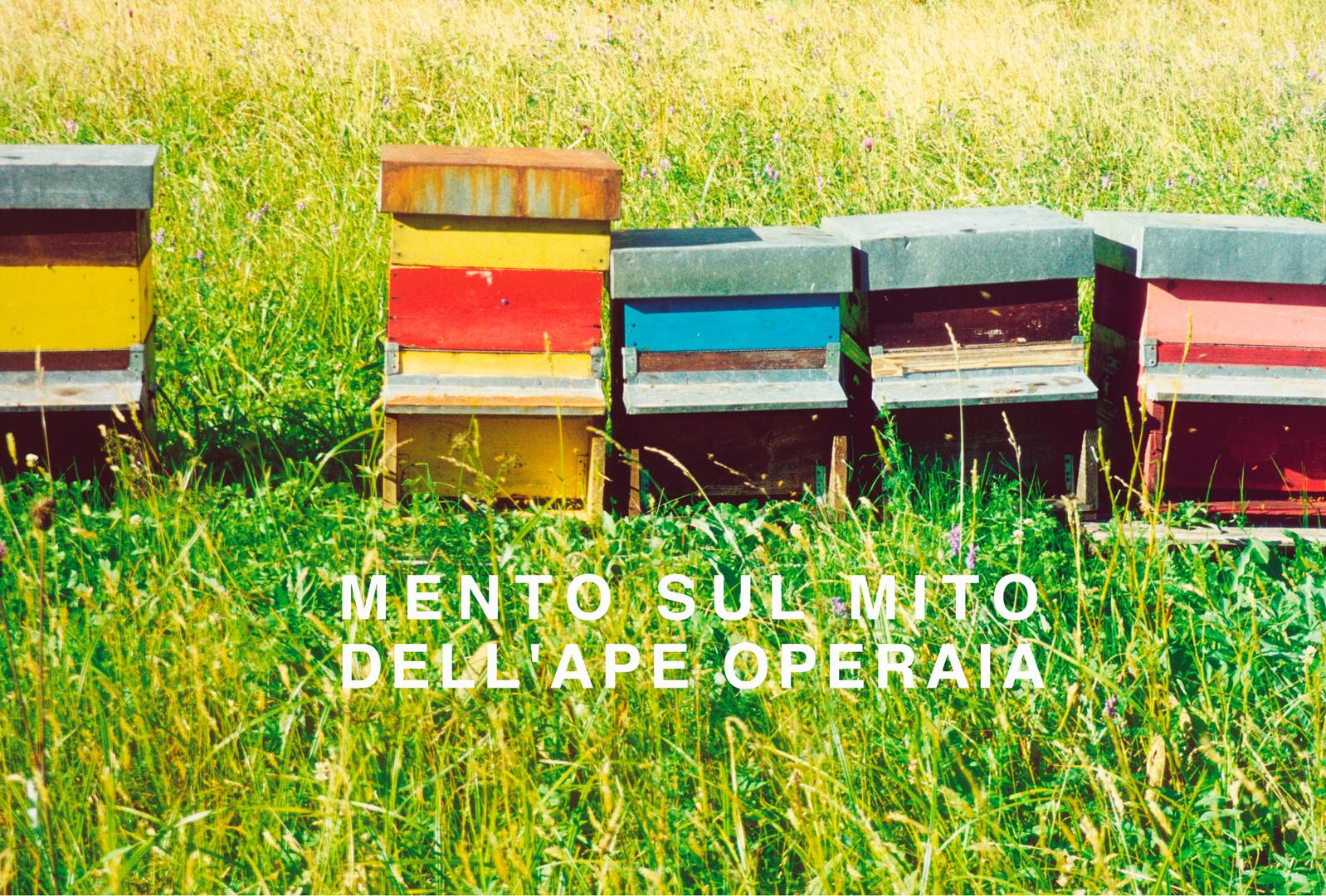 mento sull mito dell'ape operaia