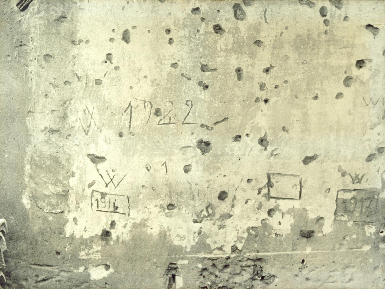 VIVE - 1973