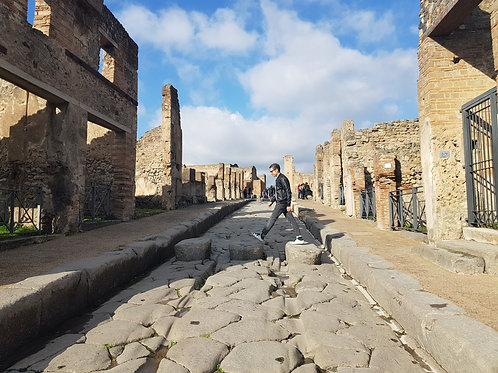Pompeii and Wine Testing Tour from Amalfi