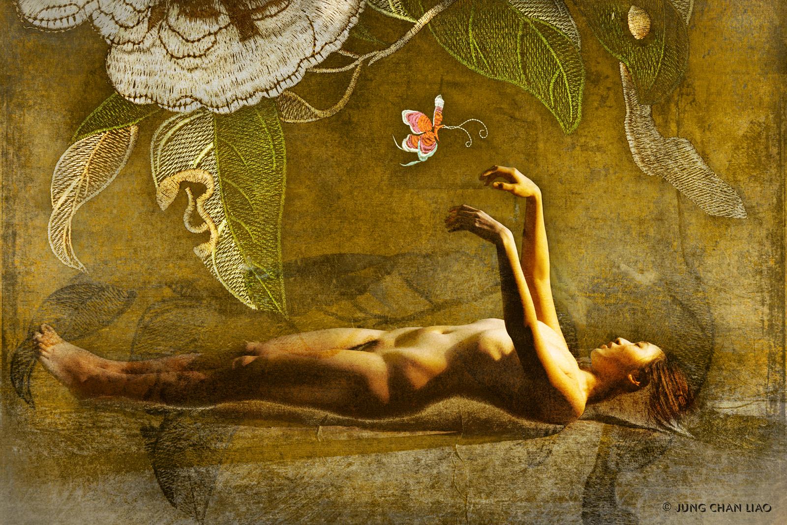 Dreams of A Butterfly - II