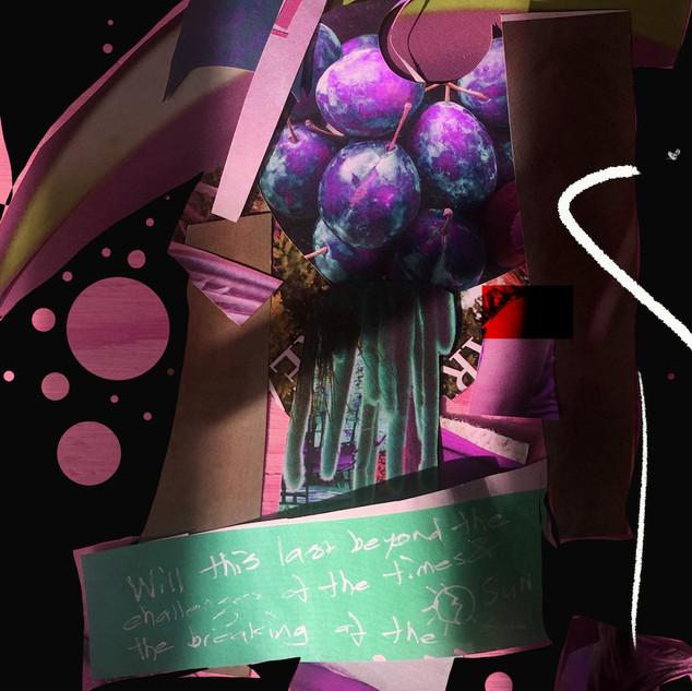 wrath of plums.jpg