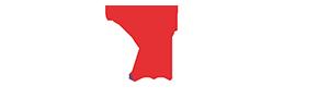 D2P_Logo_ohne_Anschrift_300x90_negativ02