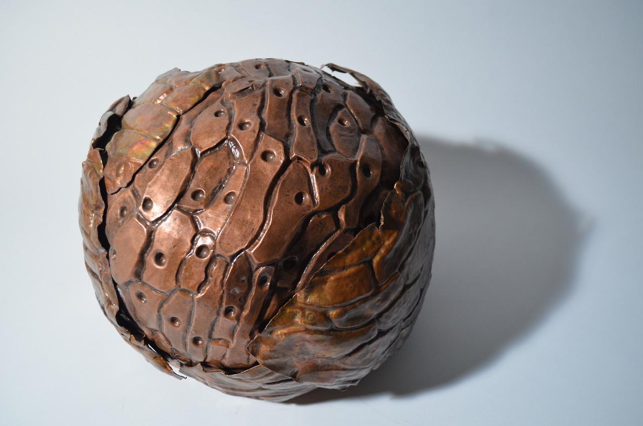 Onion ミクロマクロ