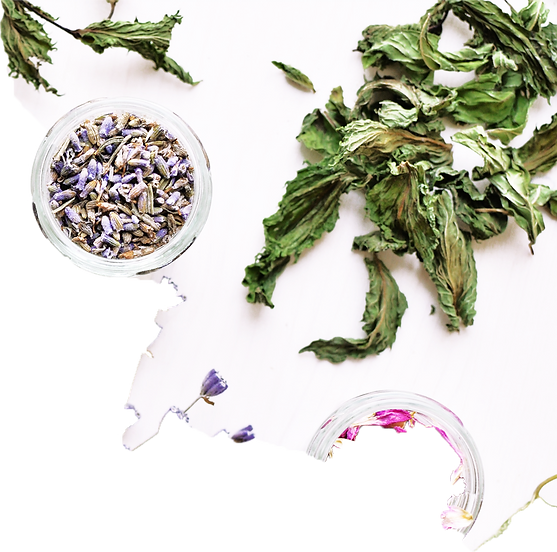 What-are-herbal-teas3.png