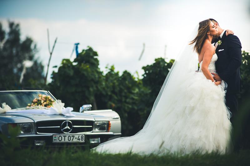 wendl-peter-wedding-bestof-2016-hv-60