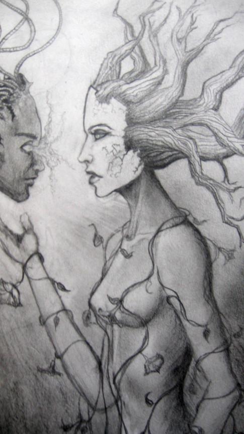 Curious Nature (sketch)
