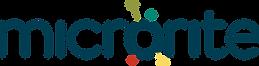 Microrite Logo PNG.png