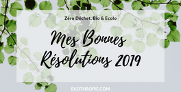 6 RESOLUTIONS ECOLO' & ZERO DECHET