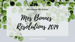 6 RESOLUTIONS ECOLO' & ZERO DECHET