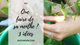DIY : Que faire de sa menthe ? Sirop, Gelée & Paillettes