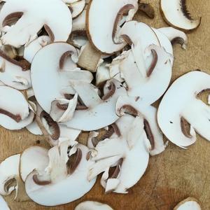 lamelles de champignons