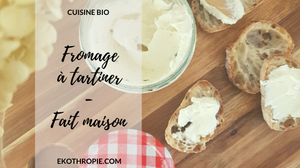 fromage à tartiner maison