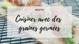 RECETTE : Cuisiner les graines germée - Bio - Zéro Déchet