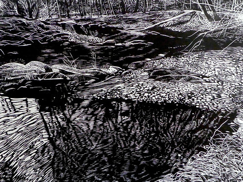Darby Creek from Pennock Woods 2