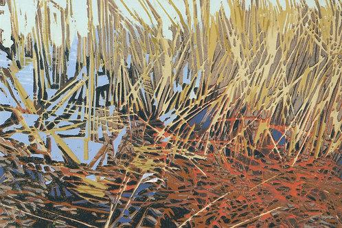 Tinicum Marsh 1