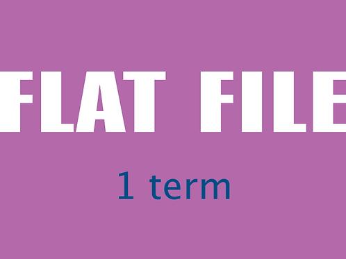 FLAT FILE, 1 Term