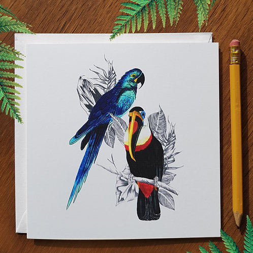 Toucan and Parrot greetings card