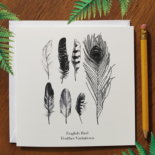Feather Variations (English Bird) greetings card