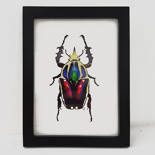 A6 Love Bug - Red Radiance