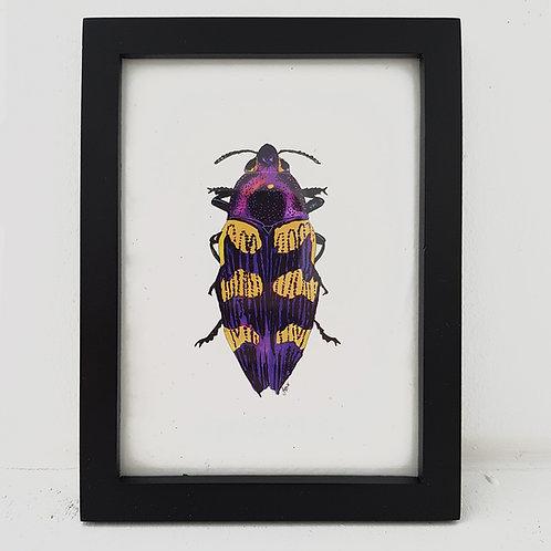 A6 Love Bug - Purple Power