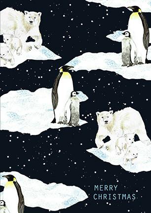 penguin card, polar bear card, xmas cards, eco friendly card, chrimbo cards, penguin and polar bear