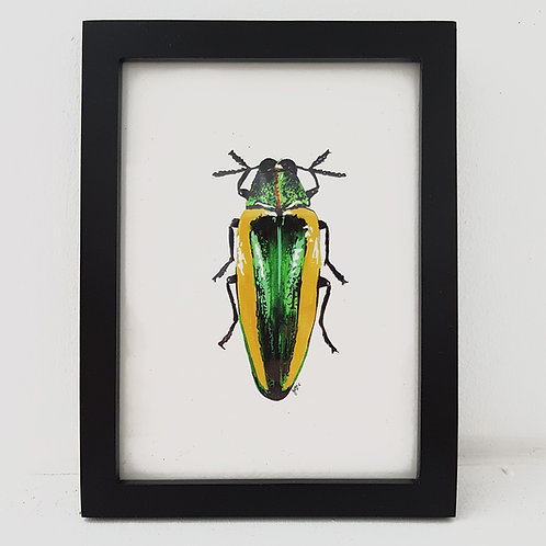 Love Bug - Graceful Green