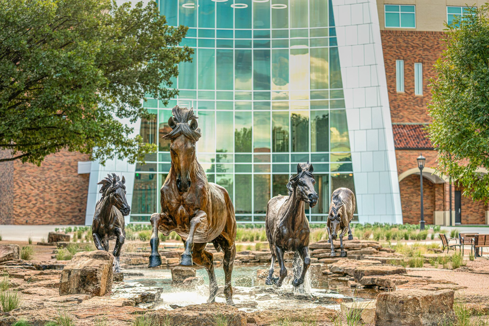 """Midwestern State University """"Spirit of the Mustangs"""""""