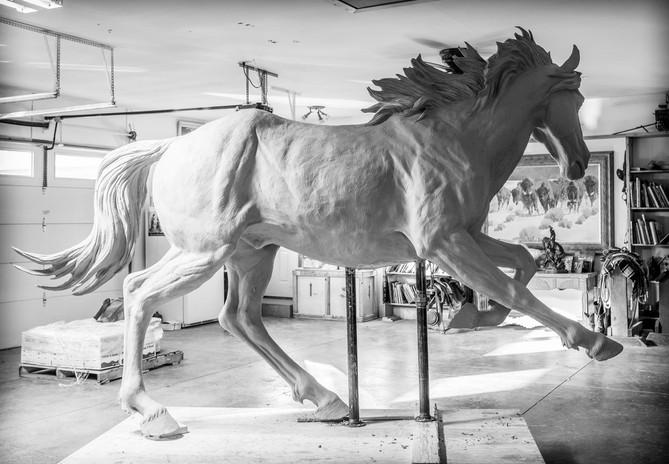 MSU Sophomore Horse - Right side 1.jpg