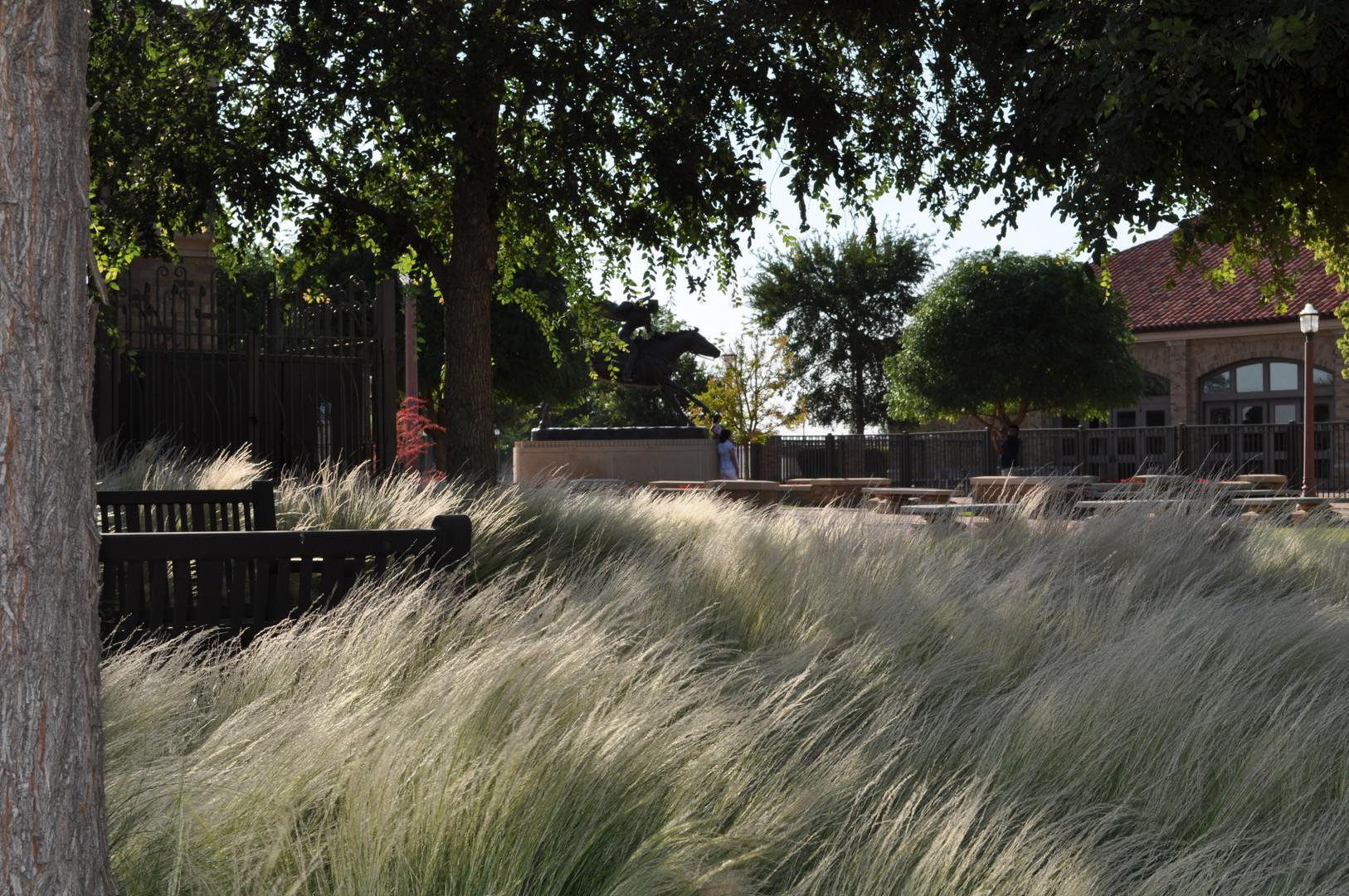 Texas Tech University Memorial Garden